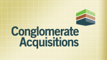 Conglomerate Acquisitions
